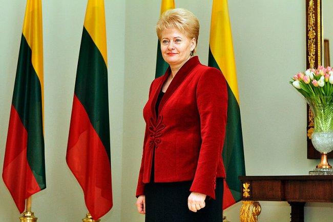 Удивительная биография красной Дали Ритм Евразии Карьера нынешнего президента Литвы Дали Грибаускайте представляет типичный во многом пример судьбы бывшего представителя советской партийной элиты